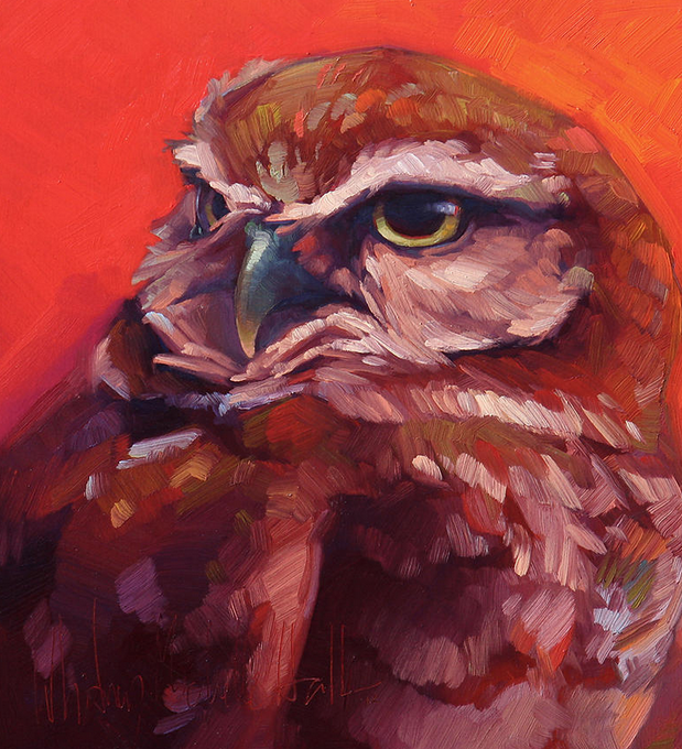 Whitney-Hall-Prudence-Burrowing-Owl-2016