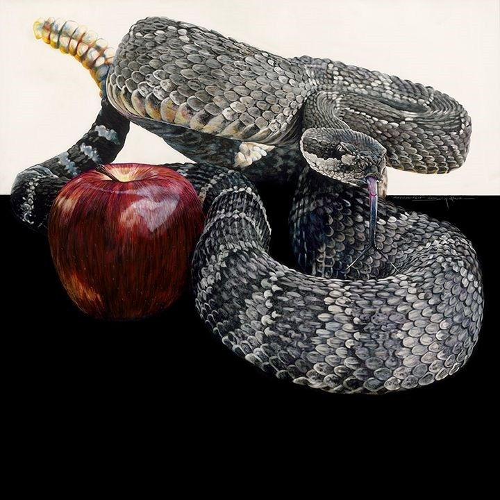 "Forbidden Fruit, half Scratchboard/half Pitt Pens on Claybord, 36"" x 36"""